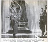 sari-gown